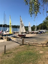 BSA Summer Regatta